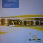 2007-Parkerlab-Eisbaër